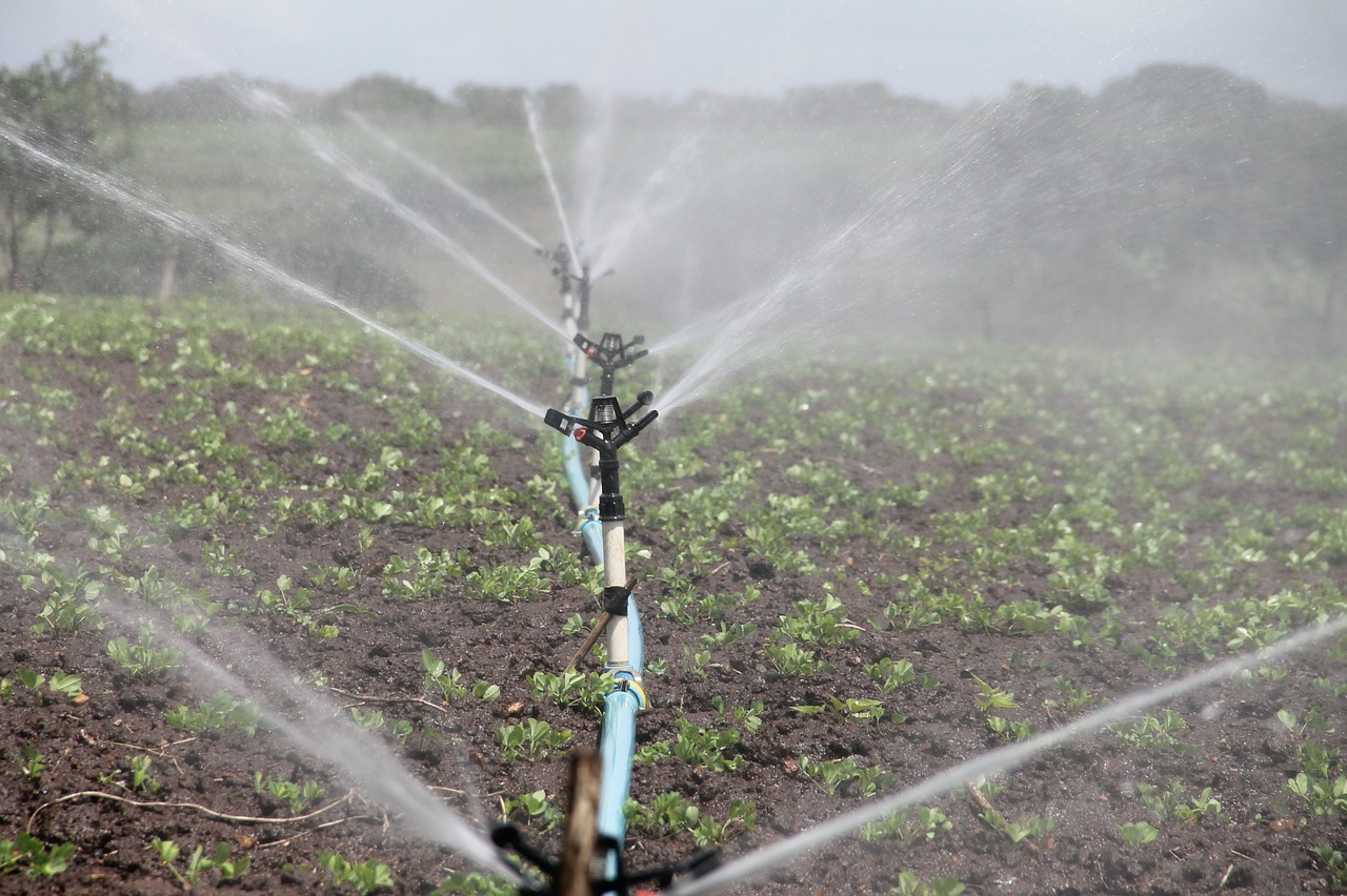 Flagaman Irrigation System Feasibility Study Far Advanced