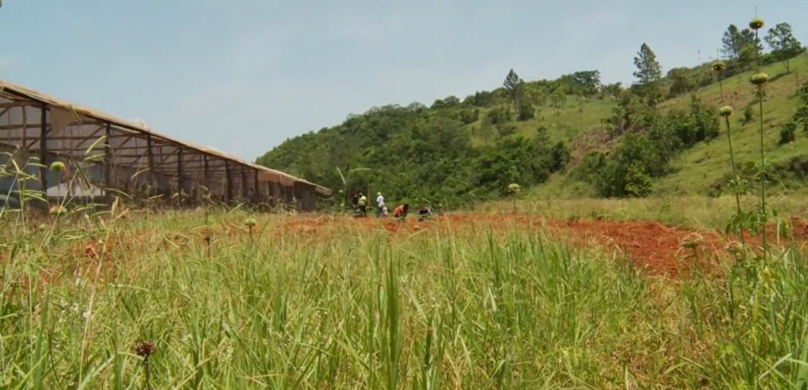 Watch: 400 Acre Agro-Industrial Project Coming to Lakes Pen
