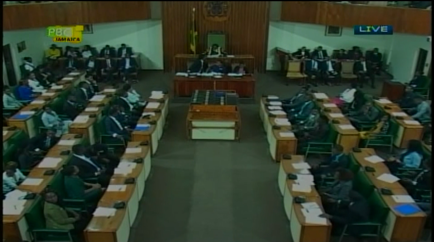 Youth Parliamentarians Calls For Greater Youth Par