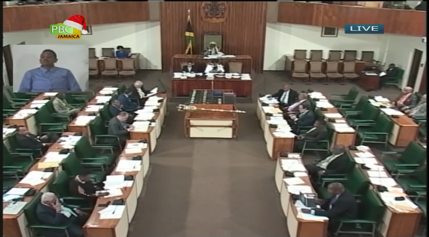 Govt Defends Suspension OfEdna Manley's Principal