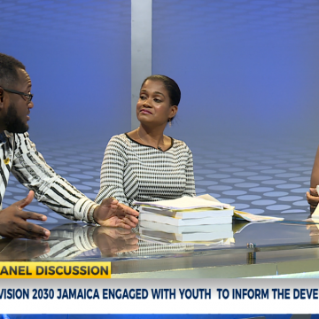 Youth Perspective On Vision 2030