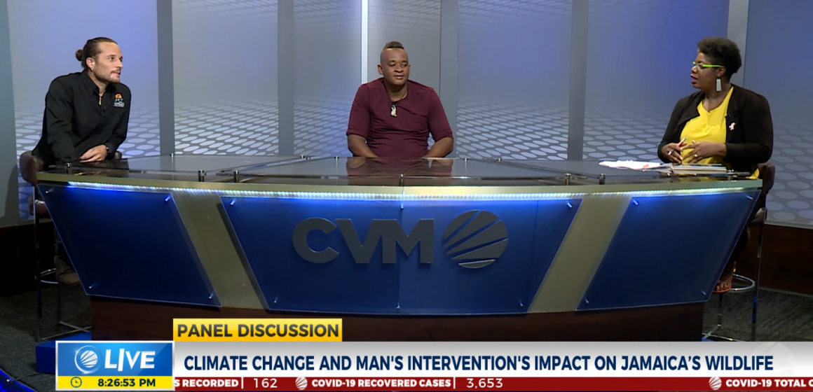 Climate Change and Jamaica's Wildlife on Panel Discussion