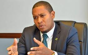 Minister Green: Increase In Arrests Of Praedial Larcenists