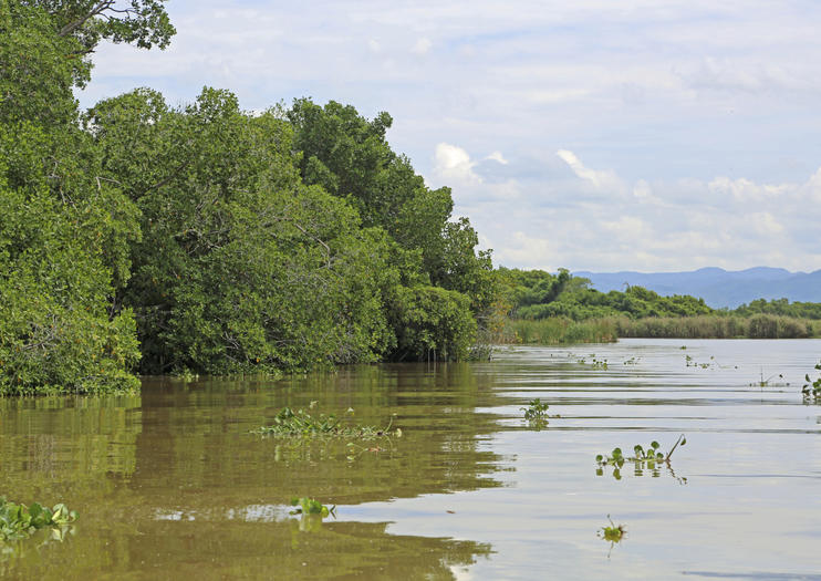 Cabinet Approves Designation Of Black River Protected Area