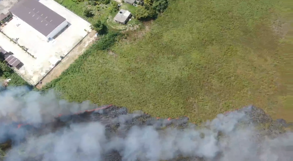 Wetland in Negril Caught Fire During Easter Break