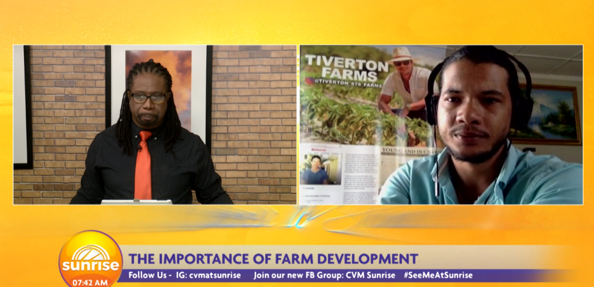 The Importance of Farm Development in Jamaica