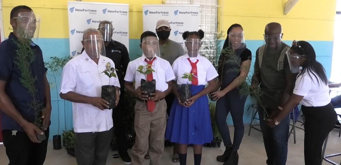 Private Organizations Donate Trees to Build Greener Jamaica