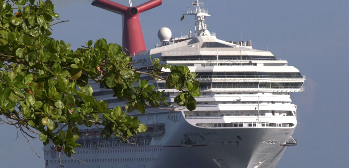 Mixed Reactions to Cruise Ship Docking on No-Movement Day