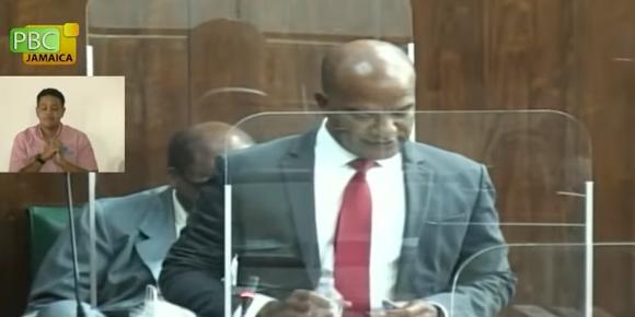 Senator Bunting: Crime Takes Senate Centre-Stage